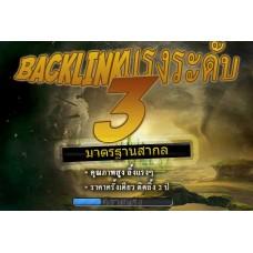 แพคเกจ Backlink ระดับ 3 - เว็บที่ E339