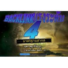 แพคเกจ Backlink ระดับ 4 - เว็บที่ E461