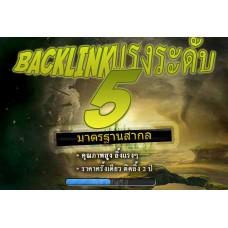 แพคเกจ Backlink ระดับ 5 - เว็บที่ E527