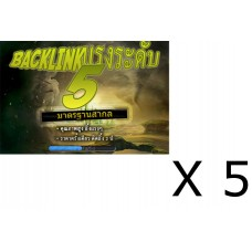 Backlink ระดับ 5 - 5 แพคเกจ (E517-E521)